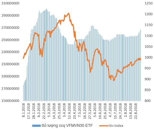 Sau giai đoạn liên tục bị rút vốn, quỹ ETF nội VFMVN30 đã hút ròng hơn trăm tỷ đồng chỉ trong tuần cuối tháng 8 - Ảnh 1.