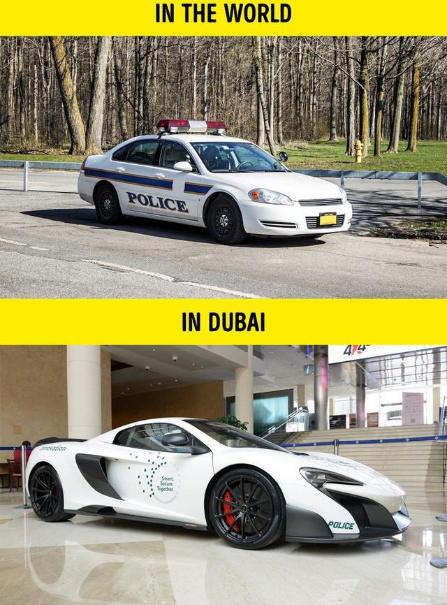 9 sự thật không thể đỡ được khiến bạn phải ngã ngửa khi nhắc đến Dubai - Ảnh 2.