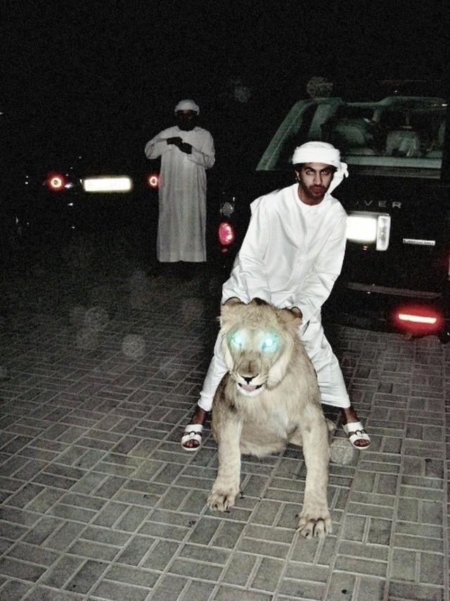 9 sự thật không thể đỡ được khiến bạn phải ngã ngửa khi nhắc đến Dubai - Ảnh 7.