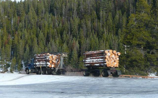 Những tài nguyên thiên nhiên hàng đầu sẽ sớm cạn kiệt - Ảnh 11.