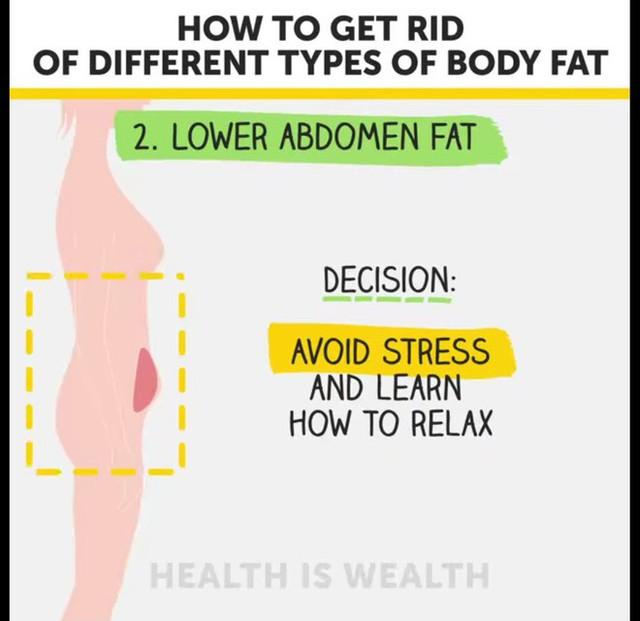 Béo bụng, to đùi, xệ mông và cách điều trị hiệu quả - Ảnh 4.