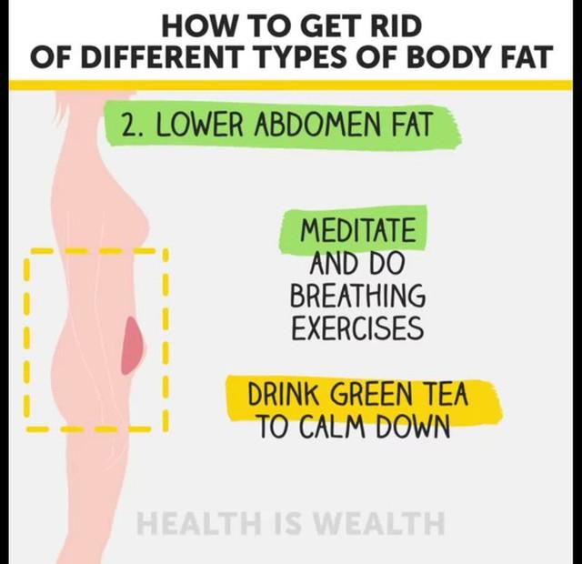 Béo bụng, to đùi, xệ mông và cách điều trị hiệu quả - Ảnh 5.