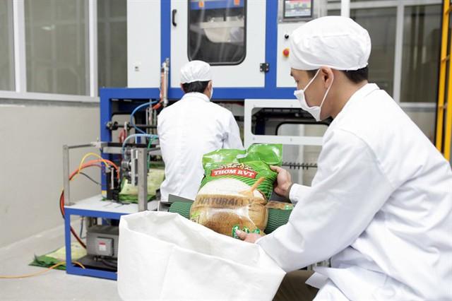 Khi cổ đông ngoại là 'cầu nối' đưa doanh nghiệp Việt vươn ra thế giới - Ảnh 1.