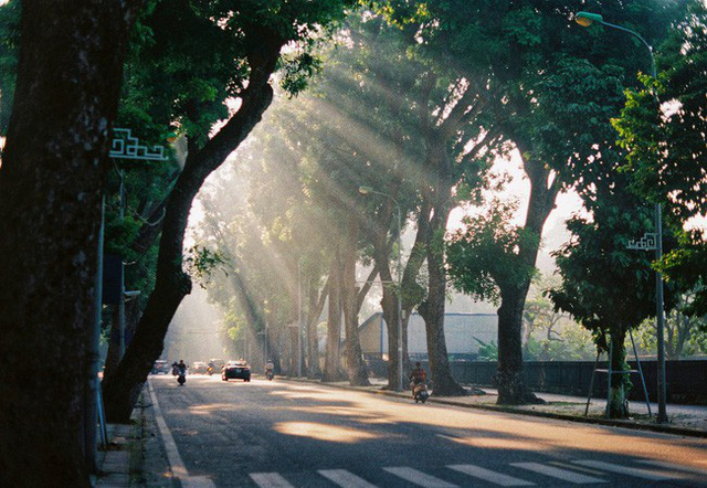Có một Hà Nội rất khác những ngày này, bình yên và đẹp mơ màng trong nắng mùa thu - Ảnh 6.