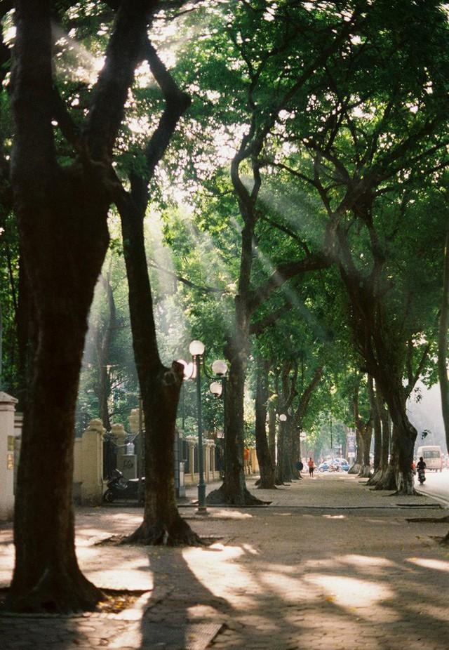 Có một Hà Nội rất khác những ngày này, bình yên và đẹp mơ màng trong nắng mùa thu - Ảnh 7.
