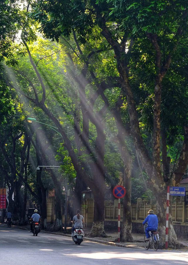 Có một Hà Nội rất khác những ngày này, bình yên và đẹp mơ màng trong nắng mùa thu - Ảnh 8.