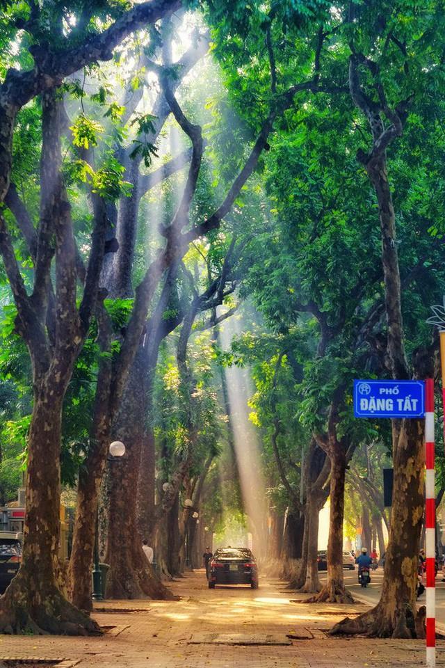 Có một Hà Nội rất khác những ngày này, bình yên và đẹp mơ màng trong nắng mùa thu - Ảnh 9.