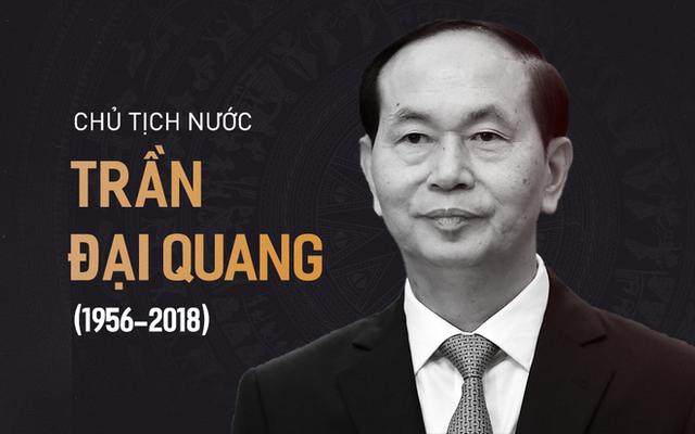 Chủ tịch nước Trần Đại Quang trở về đất mẹ - Ảnh 1.