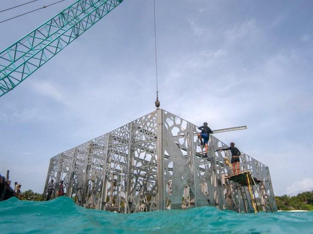 Khám phá phòng trưng bày nghệ thuật thủy triều độc đáo tại Maldives - thiên đường hạ giới ai cũng nên đến một lần trong đời - Ảnh 7.