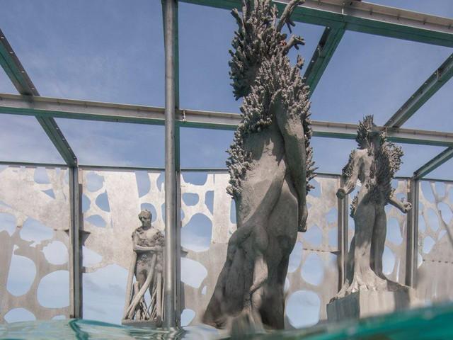Khám phá phòng trưng bày nghệ thuật thủy triều độc đáo tại Maldives - thiên đường hạ giới ai cũng nên đến một lần trong đời - Ảnh 8.