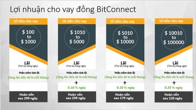 Bitconnect - quả bong bóng bị chọc vỡ đầu tiên trên thị trường tiền số - Ảnh 1.
