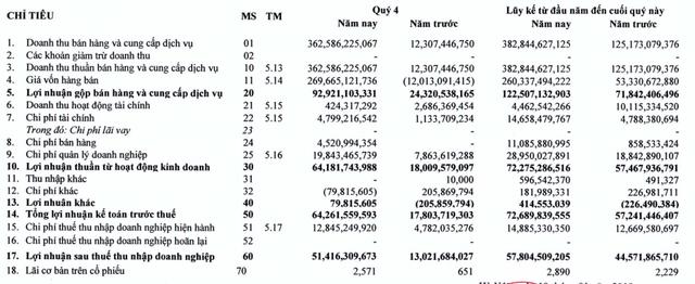 HUDLAND (HLD): Quý 4 lãi ròng hơn 51 tỷ đồng cao gấp 4 lần cùng kỳ - Ảnh 1.