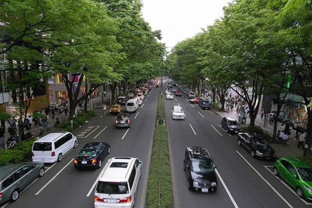 Đây là lí do Nhật Bản là đất nước xanh, sạch, đẹp nhất thế giới - Ảnh 1.