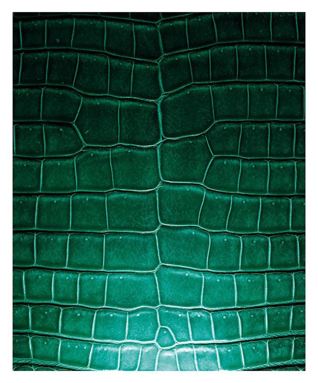 Da cá sấu quý hiếm là chất liệu quen thuộc trong các sản phẩm Hermès.