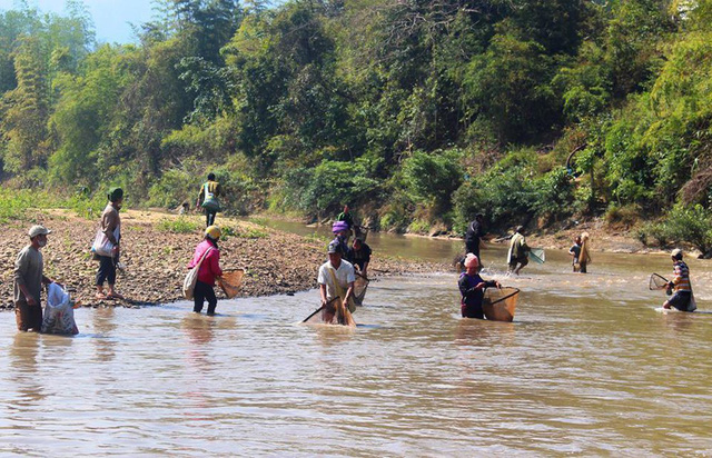 Cá chết hàng loạt do vỡ bể chứa nước thải nhà máy ở Điện Biên - Ảnh 1.