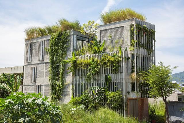 Hàng vạn dân văn phòng sẽ mơ ước được làm việc trong resort ngập cây xanh này - Ảnh 1.