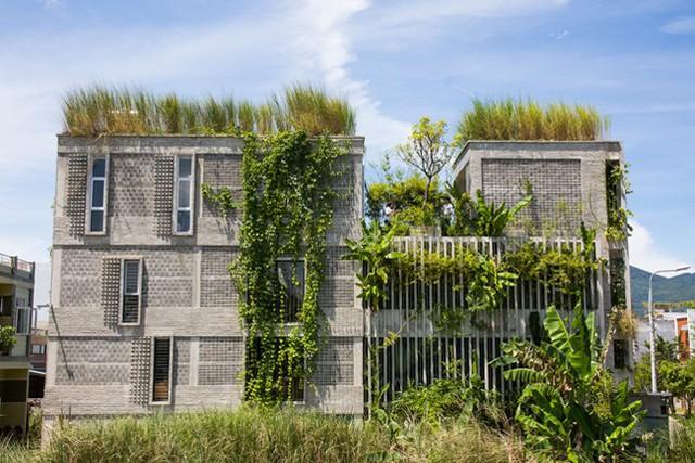Hàng vạn dân văn phòng sẽ mơ ước được làm việc trong resort ngập cây xanh này - Ảnh 2.