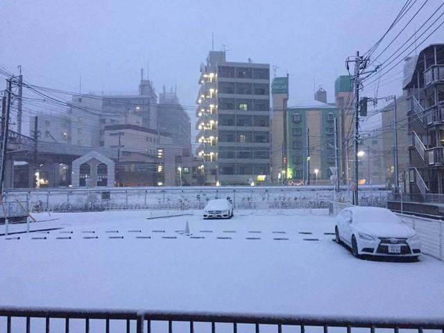 Những hình ảnh rùng mình trong bão tuyết kỷ lục tại Tokyo: Hàng trăm chuyến bay bị hủy, xe đạp đóng băng ngoài trời - Ảnh 2.