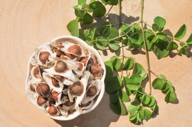 Loại rau quý tại Việt Nam được đài Chanel A và SBS Hàn Quốc công nhận với tác dụng giải độc, đẹp da - Ảnh 2.