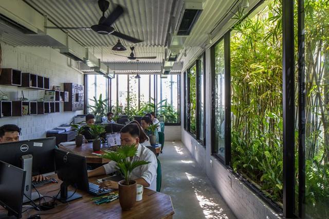 Hàng vạn dân văn phòng sẽ mơ ước được làm việc trong resort ngập cây xanh này - Ảnh 12.
