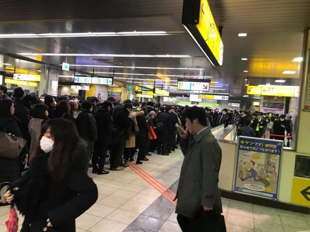 Những hình ảnh rùng mình trong bão tuyết kỷ lục tại Tokyo: Hàng trăm chuyến bay bị hủy, xe đạp đóng băng ngoài trời - Ảnh 12.