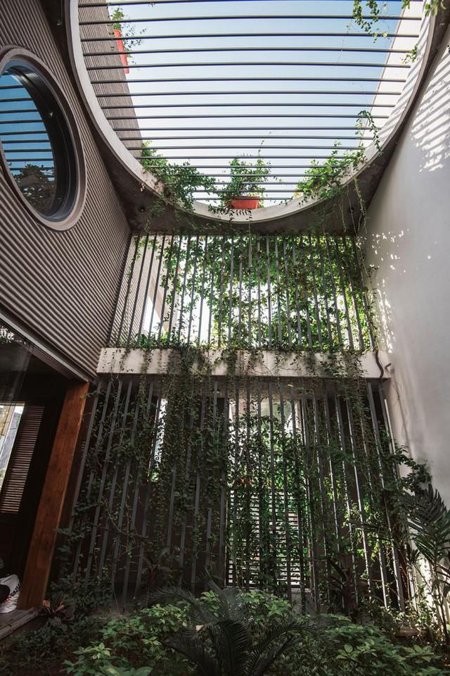 Nhờ có cây xanh ở khu vực giếng trời mà không khí trong nhà luôn trong lành và dễ chịu.