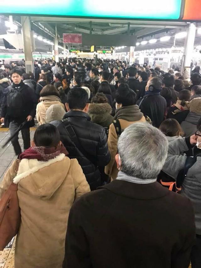 Những hình ảnh rùng mình trong bão tuyết kỷ lục tại Tokyo: Hàng trăm chuyến bay bị hủy, xe đạp đóng băng ngoài trời - Ảnh 13.