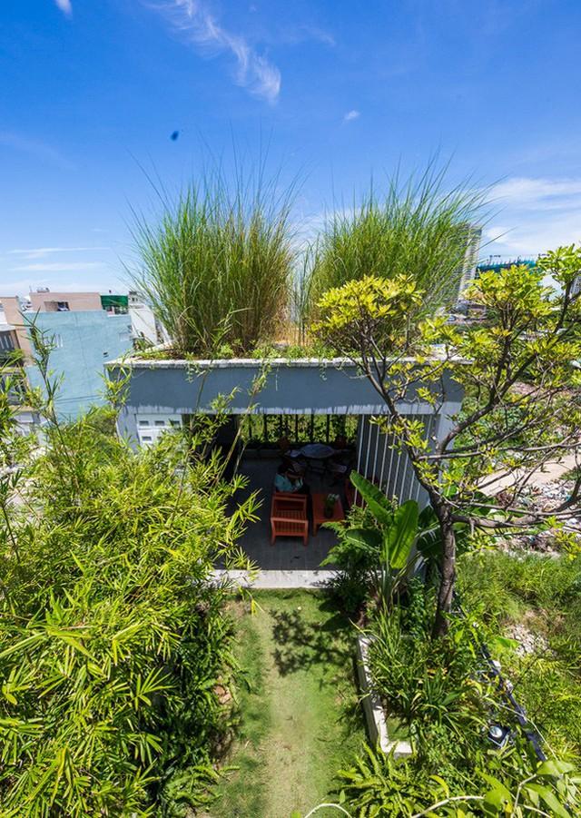 Hàng vạn dân văn phòng sẽ mơ ước được làm việc trong resort ngập cây xanh này - Ảnh 17.