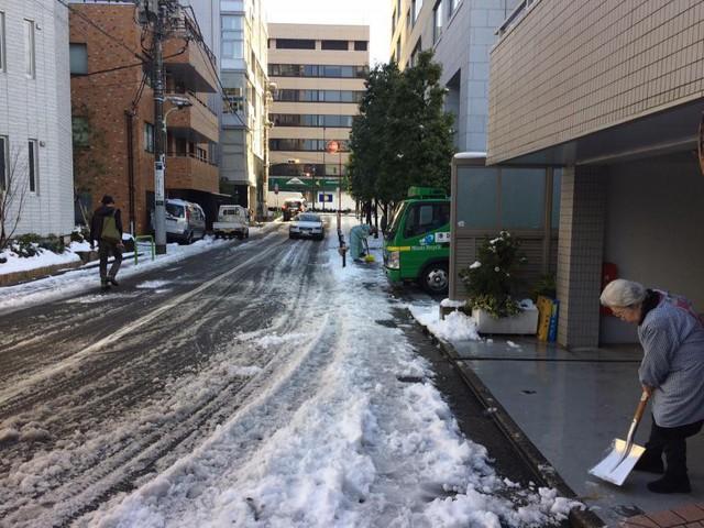 Những hình ảnh rùng mình trong bão tuyết kỷ lục tại Tokyo: Hàng trăm chuyến bay bị hủy, xe đạp đóng băng ngoài trời - Ảnh 17.