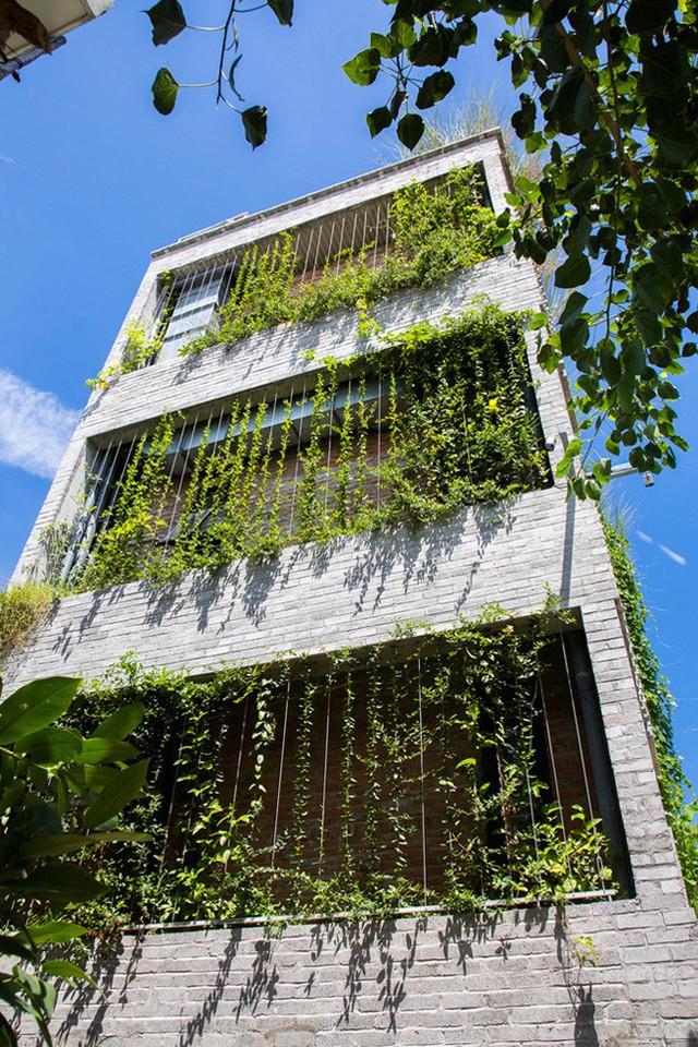 Hàng vạn dân văn phòng sẽ mơ ước được làm việc trong resort ngập cây xanh này - Ảnh 3.