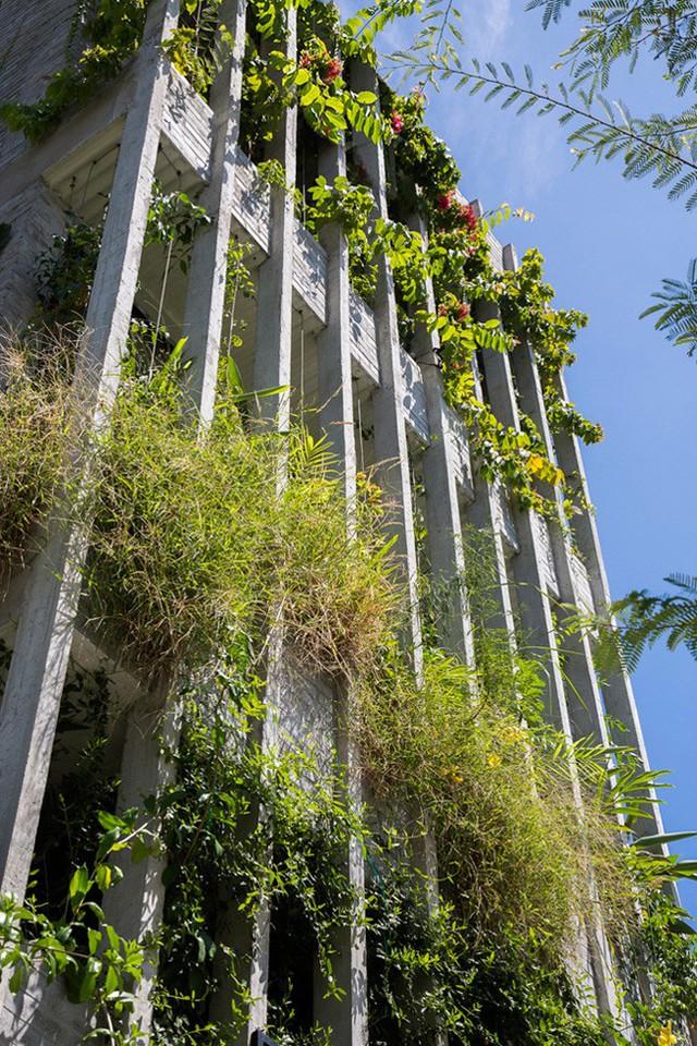 Hàng vạn dân văn phòng sẽ mơ ước được làm việc trong resort ngập cây xanh này - Ảnh 6.