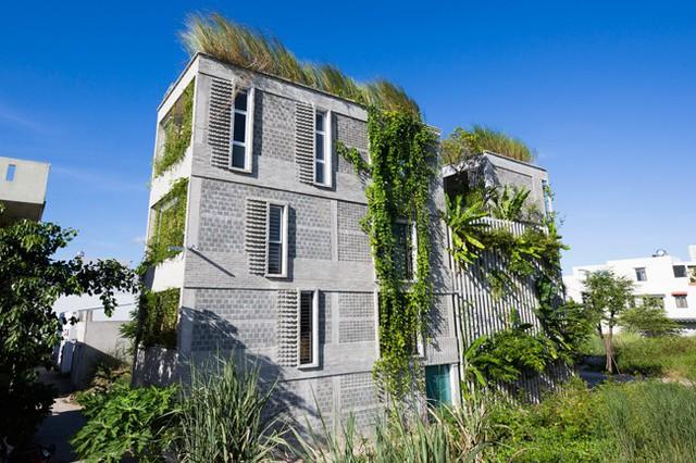 Hàng vạn dân văn phòng sẽ mơ ước được làm việc trong resort ngập cây xanh này - Ảnh 7.