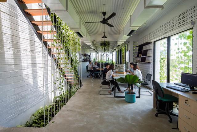 Hàng vạn dân văn phòng sẽ mơ ước được làm việc trong resort ngập cây xanh này - Ảnh 8.