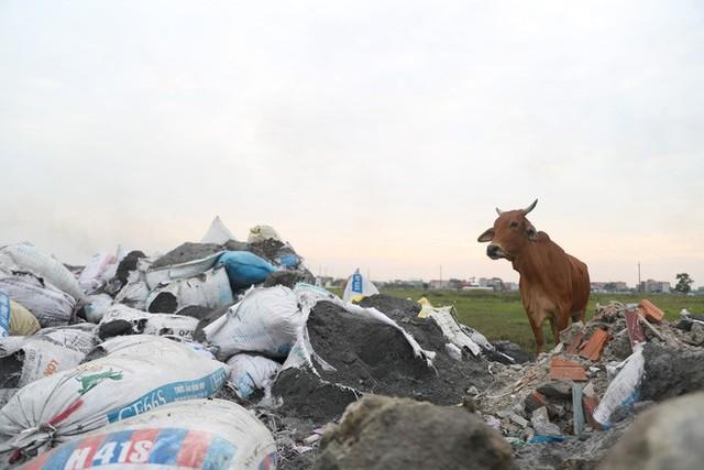 Ám ảnh bãi phế liệu kín cả cánh đồng tại nơi xảy ra vụ nổ ở Bắc Ninh - Ảnh 9.