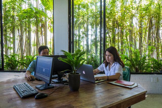 Hàng vạn dân văn phòng sẽ mơ ước được làm việc trong resort ngập cây xanh này - Ảnh 10.