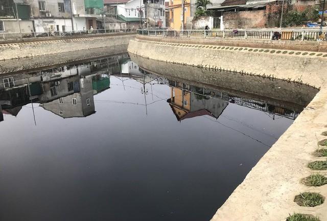 Nước kênh hào Thành cổ Vinh đen như mực, cá chết hàng loạt, dân lo sợ cầu cứu - Ảnh 3.