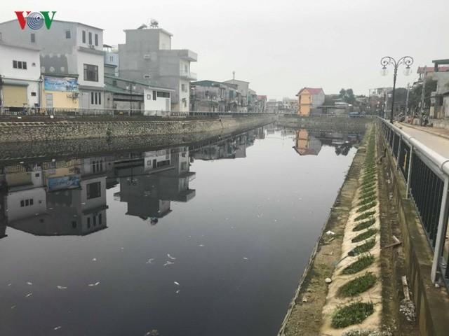 Ảnh: Kinh hoàng cá chết phủ kín cả con kênh giữa TP Vinh - Ảnh 7.