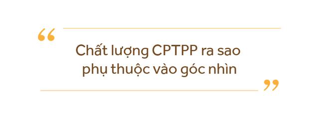 Thứ trưởng Trần Quốc Khánh: Không có lý do để bi quan với CPTPP - Ảnh 3.