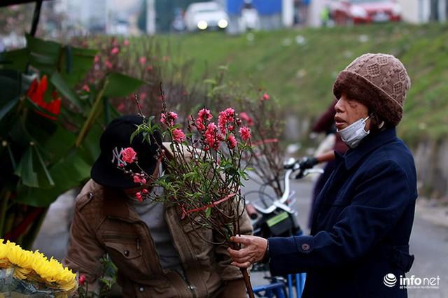 Thời tiết thuận lợi, đào Nhật Tân trổ bông to, đổ về phố phường Hà Nội - Ảnh 4.