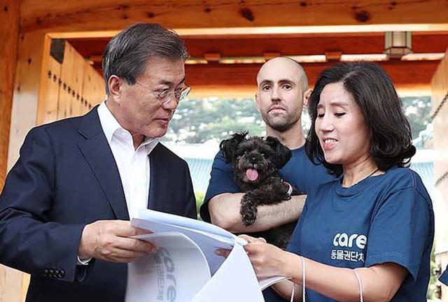 Cứu chó từ lò mổ nhưng lại giết chó để lấy tiền tài trợ, nhóm bảo vệ động vật nổi danh Hàn Quốc đang khiến dư luận phẫn nộ - Ảnh 2.