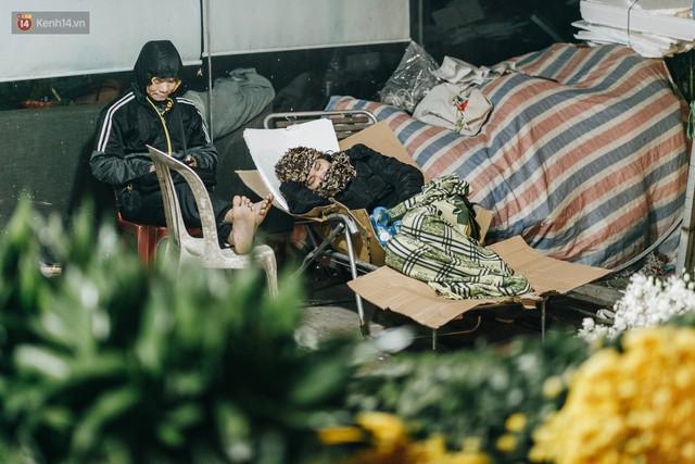 Sợ bị trộm giữa đêm, người dân Hà Nội dựng lều, trùm chăn canh đào quất trên phố - Ảnh 2.