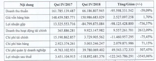 Maseco (MSC): Năm 2018 chính thức báo lỗ 164 tỷ đồng - Ảnh 1.