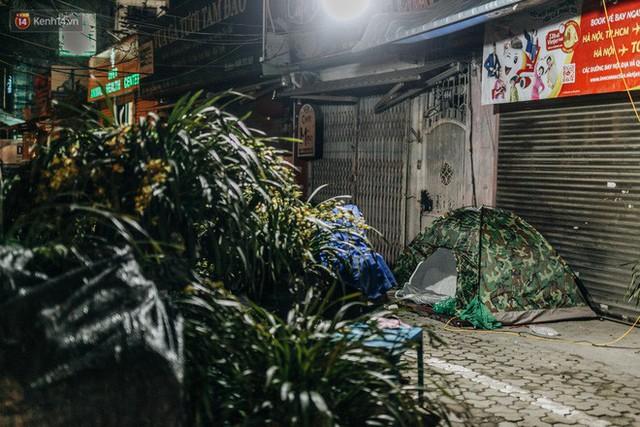 Sợ bị trộm giữa đêm, người dân Hà Nội dựng lều, trùm chăn canh đào quất trên phố - Ảnh 8.