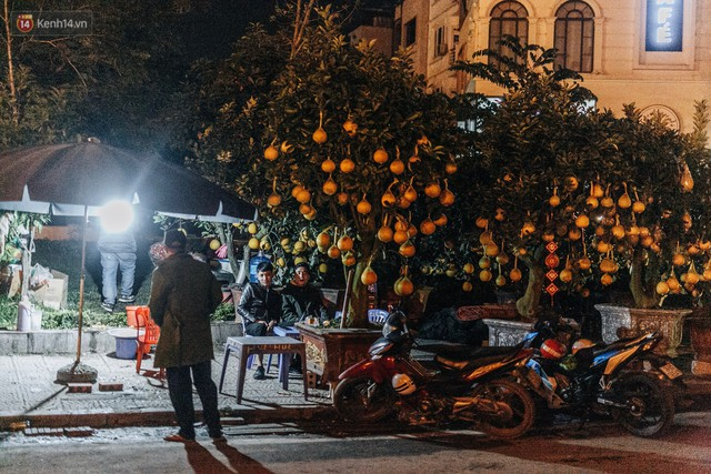 Sợ bị trộm giữa đêm, người dân Hà Nội dựng lều, trùm chăn canh đào quất trên phố - Ảnh 9.
