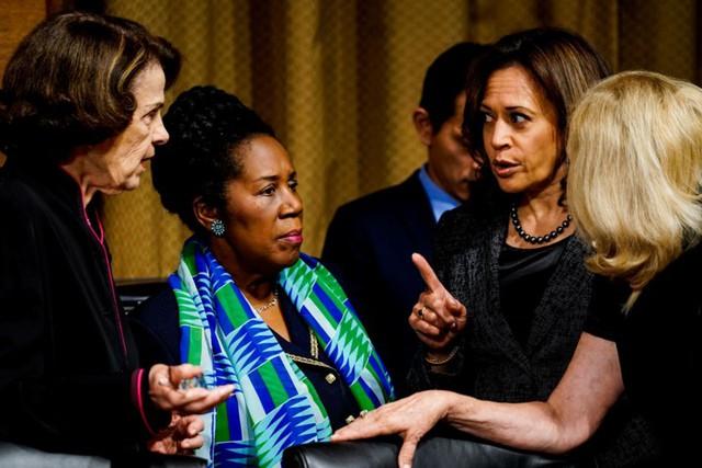 Chân dung người phụ nữ gốc Phi đầu tiên tranh cử Tổng thống Mỹ năm 2020 - Ảnh 9.