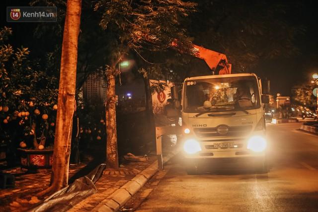 Sợ bị trộm giữa đêm, người dân Hà Nội dựng lều, trùm chăn canh đào quất trên phố - Ảnh 10.