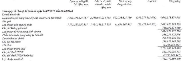 Đất Xanh Group báo lãi trên 1.700 tỷ đồng trong năm 2018, vượt 61% kế hoạch năm - Ảnh 3.