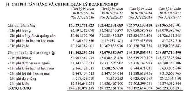 Đất Xanh Group báo lãi trên 1.700 tỷ đồng trong năm 2018, vượt 61% kế hoạch năm - Ảnh 4.