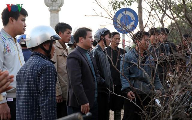 Ảnh: Đào rừng Tây Bắc ngập tràn trên phố núi Lai Châu - Ảnh 1.