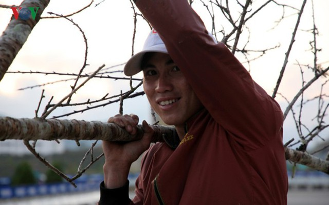 Ảnh: Đào rừng Tây Bắc ngập tràn trên phố núi Lai Châu - Ảnh 18.
